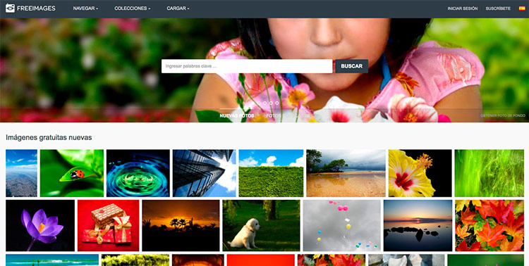 Banco de imágenes free images