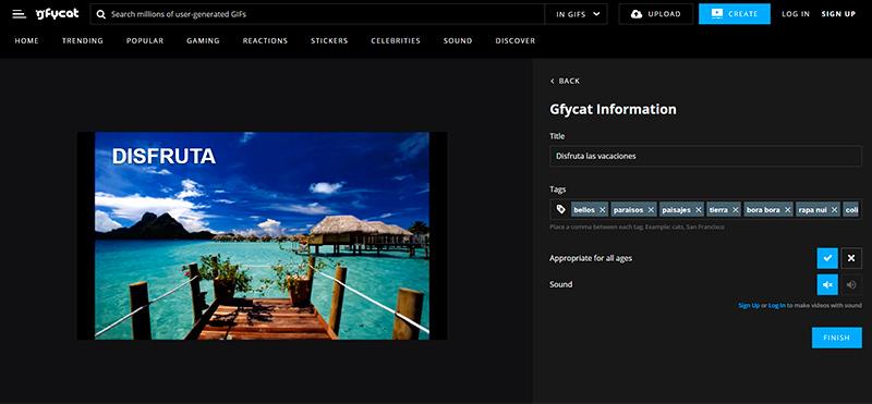 Captura de pantalla del cuadro de información de Gycat y la previsualización de la imagen
