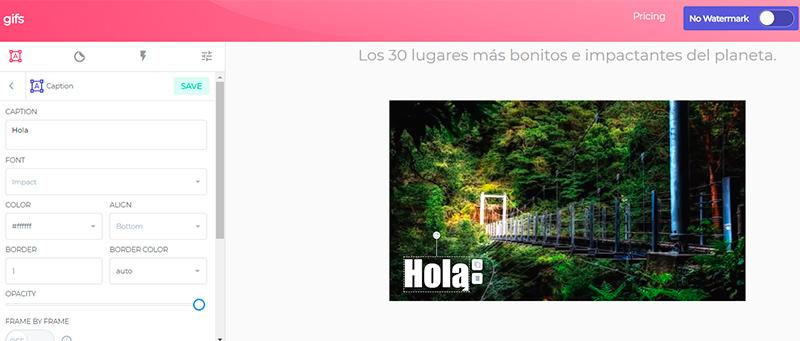 Captura de pantalla de las herramientas para agregar y editar texto junto a la previsualización de la imagen