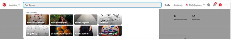 Captura de pantalla de la barra del buscador en Pinterest
