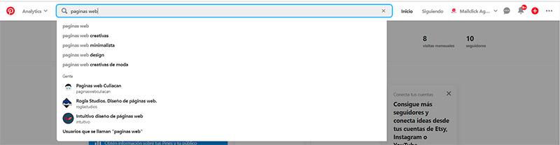 Captura de pantalla de la barra de búsqueda cuando se escribe páginas web