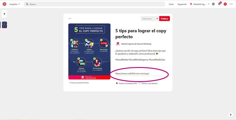 Captura de pantalla señalando el espacio para agregar la url del sitio web para enlazar el pin
