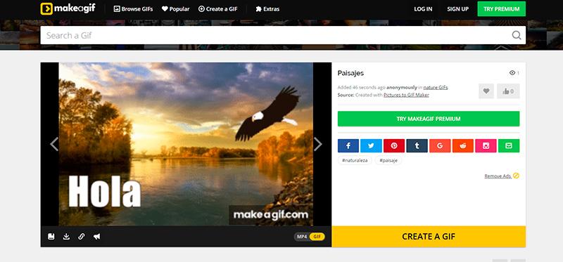 Captura de pantalla de las opciones para compartir un gif junto a la previsualización de la imagen