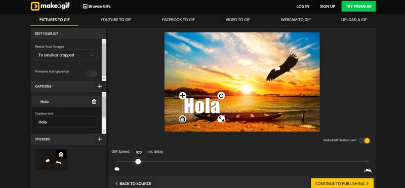 Captura de pantalla de las opciones para personalizar y la previsualizacion de la imagen