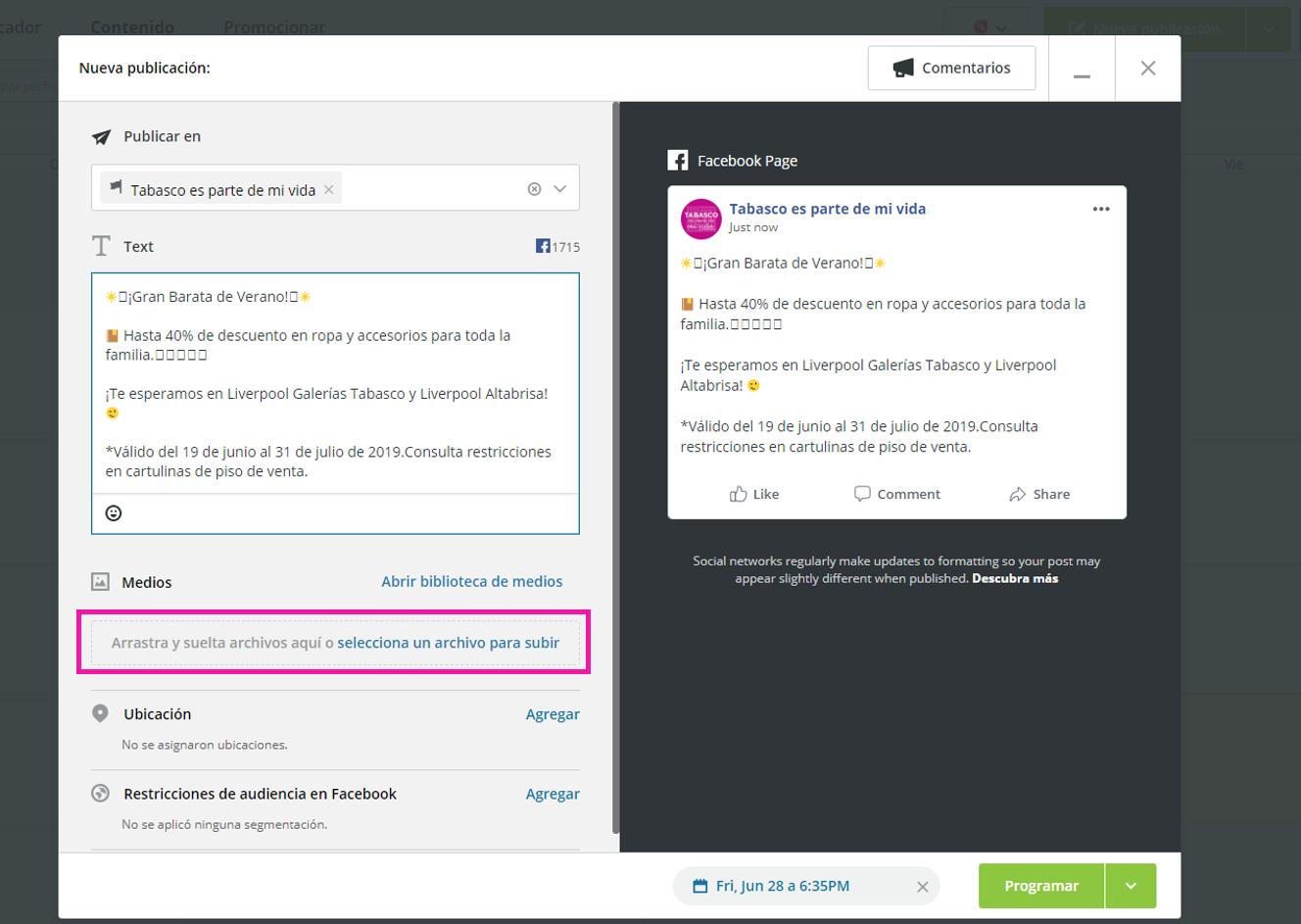 Captura de pantalla mostrando la opción para seleccionar archivo de la publicación