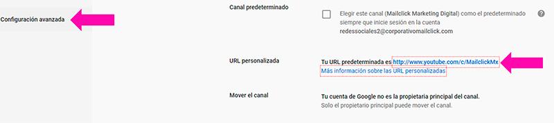 Se muestra dónde colocar la URL personalizada